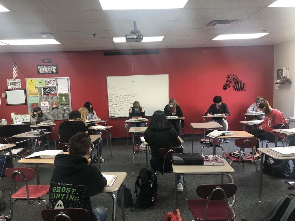 Mrs. @Sara Lahr's  English classes are reading the Greek Tragedy, Antigone.