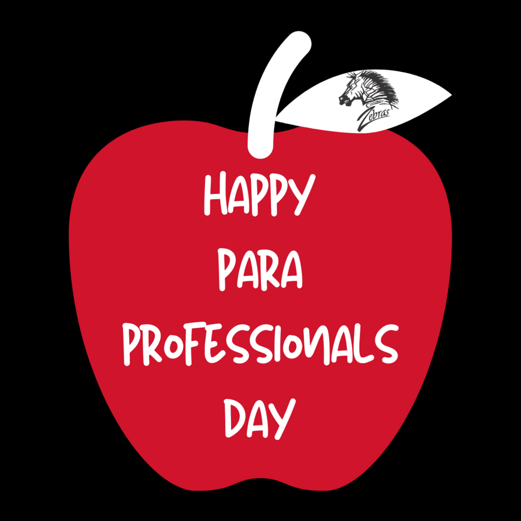 para professional day