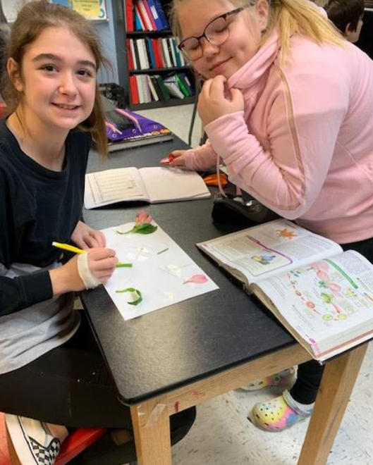 Mrs. Westfall's seventh-grade class finished their plant reproduction lesson