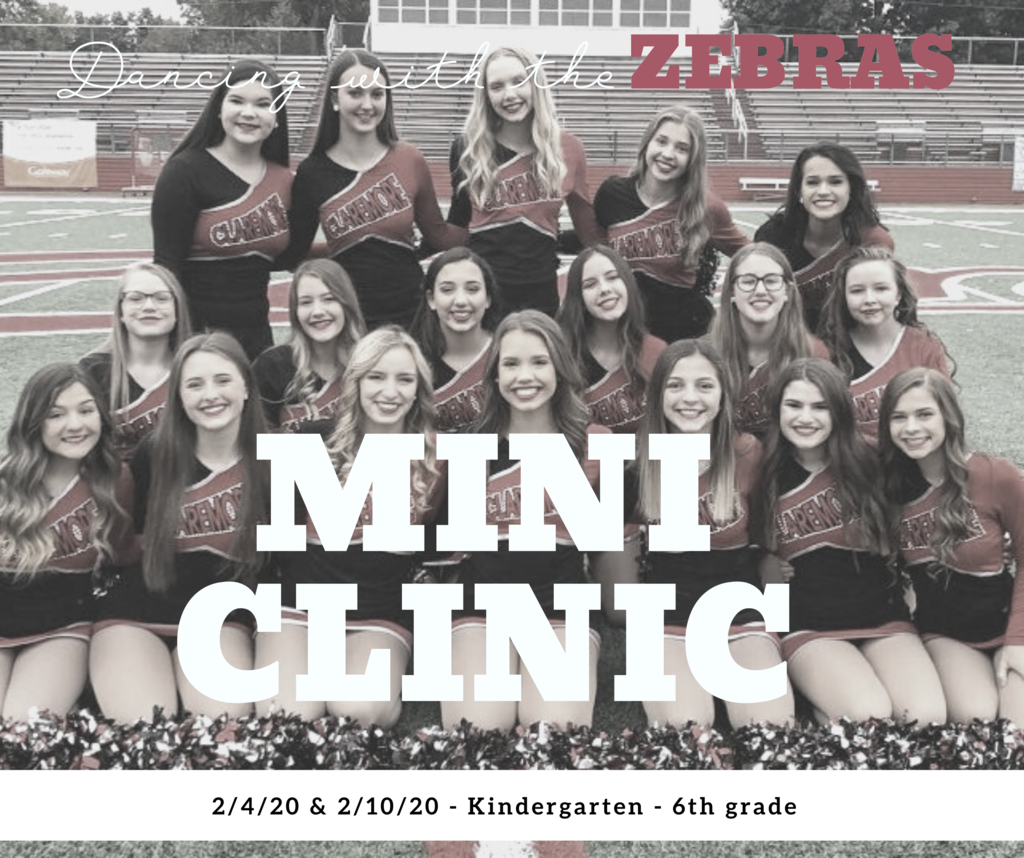 Dancing with the Zebras - Mini Clinic